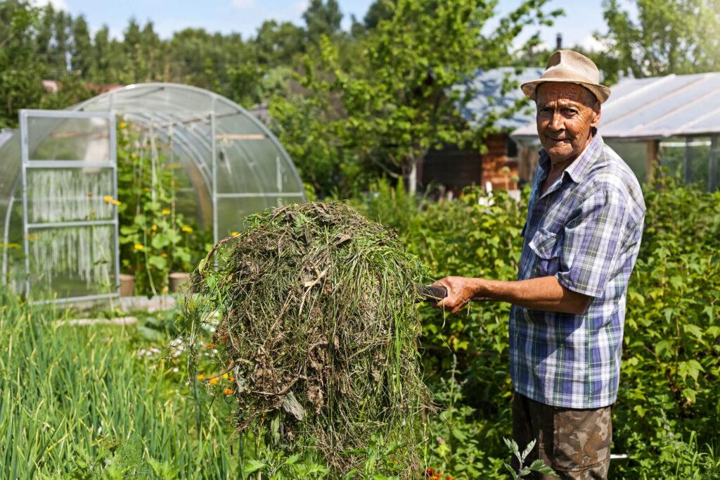 Dating online for singles senior farmer